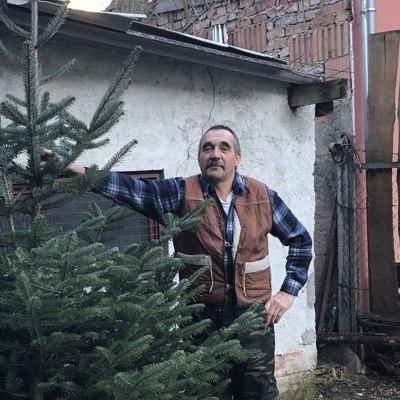 István, társkereső Sopron