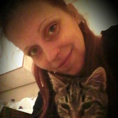 társkereső és macska
